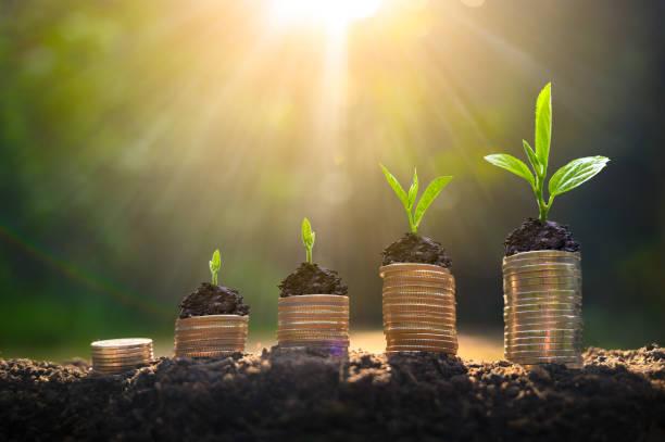 Energie- en Milieu-investeringsaftrek in 2021